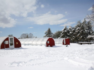 Greenhouses & Winter CSA