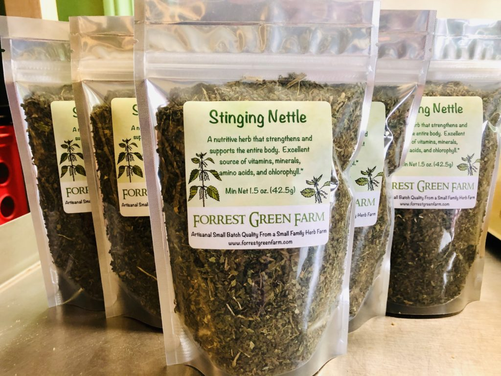 Nettle Has Many Benefits For You, Your Animals and Your