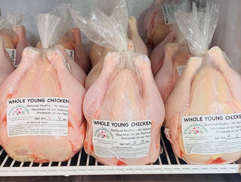 Chicken Processing Workshop